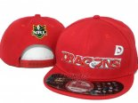 NRL Snapbacks Caps Dragons(2)